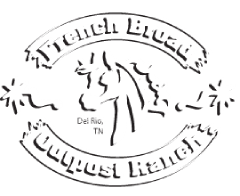 French Broad Dude Ranch